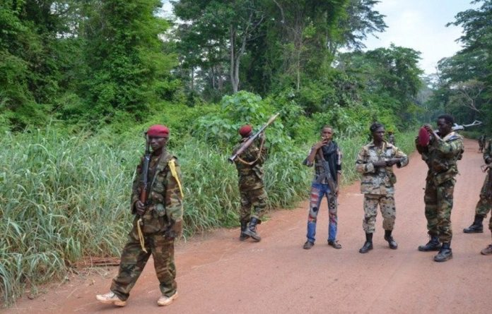 The Seleka coalition of former rebels overthrew the unstable regime of François Bozizé on March 24 2013.