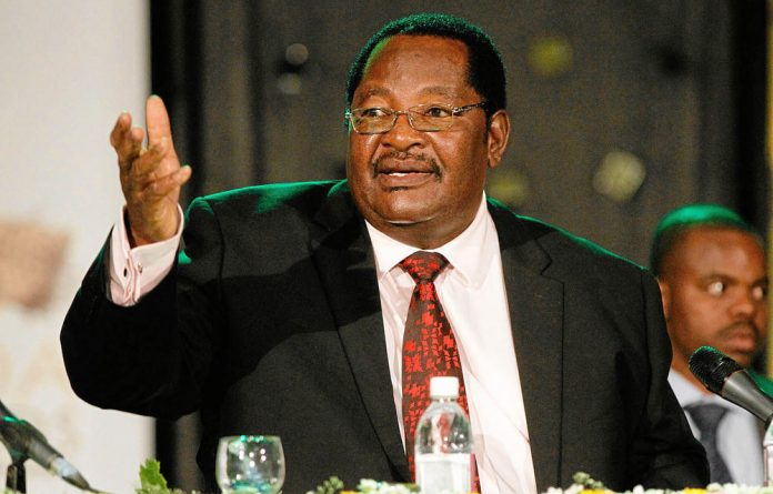 Bad idea: A parliamentary committee says Mines and Mining Development Minister Obert Mpofu's new regulations would discourage investment.