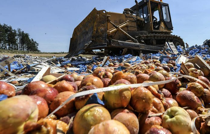 A worker crushes peaches outside Novozybkov as part of a drive in retaliation to sanctions over Ukraine to destroy Western food smuggled into the country.
