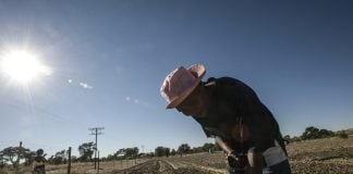 Digging deep: Land reform could fail beneficiaries if the soil and veld are depleted in the process.