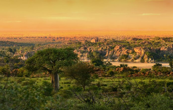 Awesome: The Mapungubwe National Park of Limpopo province is part of the Vhembe experience.