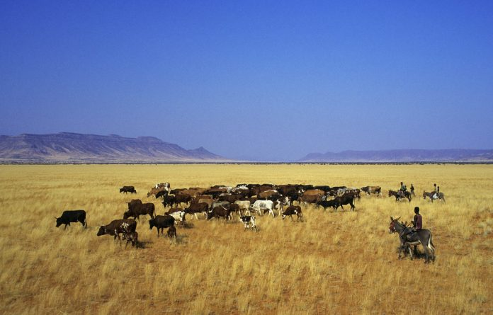For many herders in Namibia