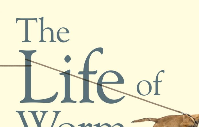 The Life of Worm & Other Misconceptions: A collection of short stories