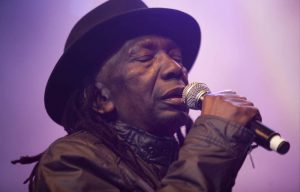 Thomas Mapfumo performs in Johannesburg.