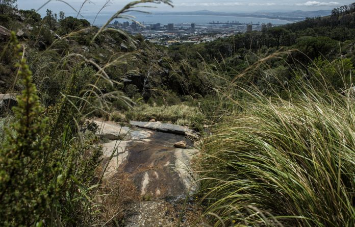 Misleading: Caron von Zeil's desire to restore Table Mountain's Camissa springs is good from a historical perspective but it won't solve Cape Town's water crisis