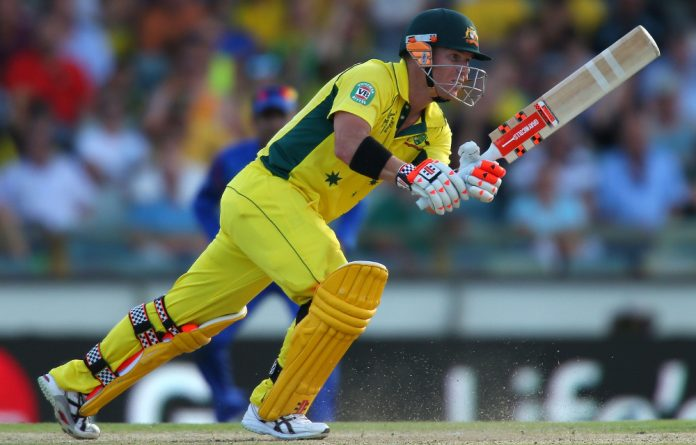 David Warner made Australia's highest World Cup individual score of 178 during the game.