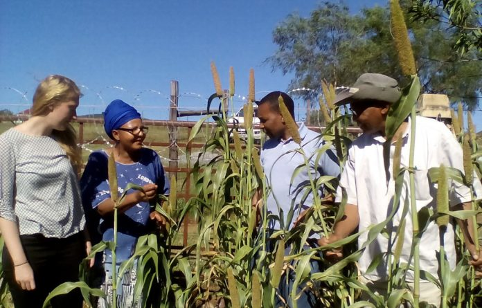 Demonstration sites allow communities to see for themselves that Amanzi's ideas work