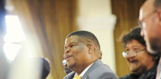 Recent comments by President Jacob Zuma and his new minister of energy David Mahlobo