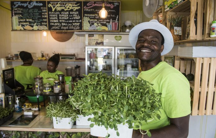 Elisha Madzivadondo grows microgreens and sprouts in a small urban garden in Cape Town.
