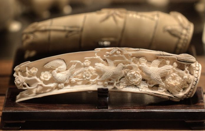 Antique ivory – defined as pre-1947 worked ivory – is an exception and can be traded in the UK and EU.