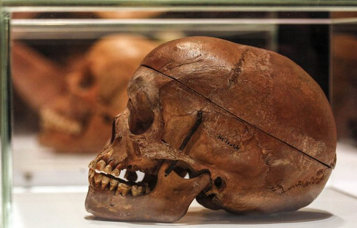 Human skulls from the Herero and ethnic Nama people are displayed during a ceremony in the auditorium of Berlin's Charite hospital on September 30 2011.