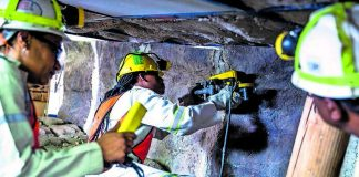 The Mandela Mining Precinct will address many issues in the sector
