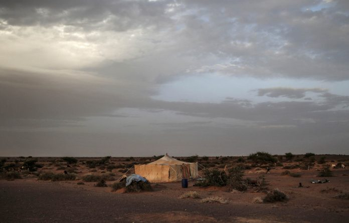 The Western Saharan desert  may be inhospitable