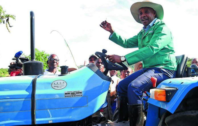 Provincial premier Phumulo Masualle