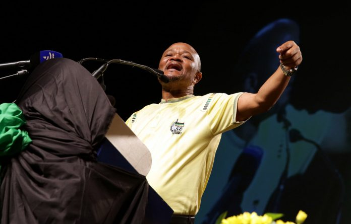 Former provincial chairperson Senzo Mchunu.