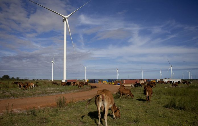 Tsitsikamma Community Wind Farm on the Garden Route is one of the few turbine projects on communal land.
