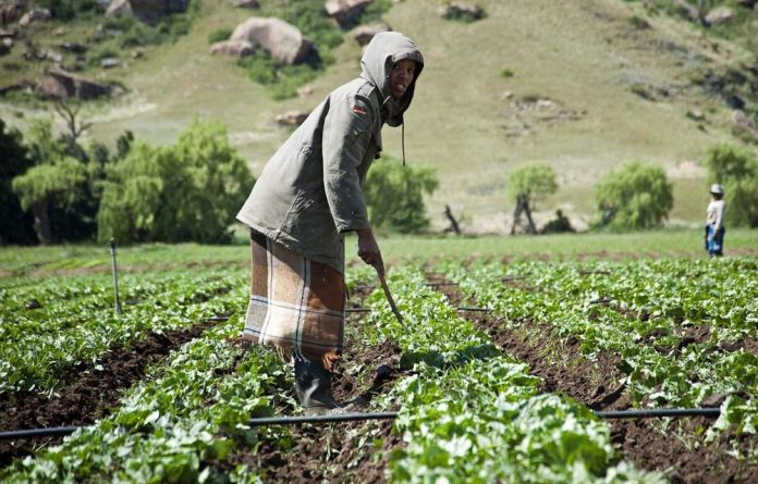 The Constitution makes provision for the restitution of land to those who were dispossessed during apartheid rule.