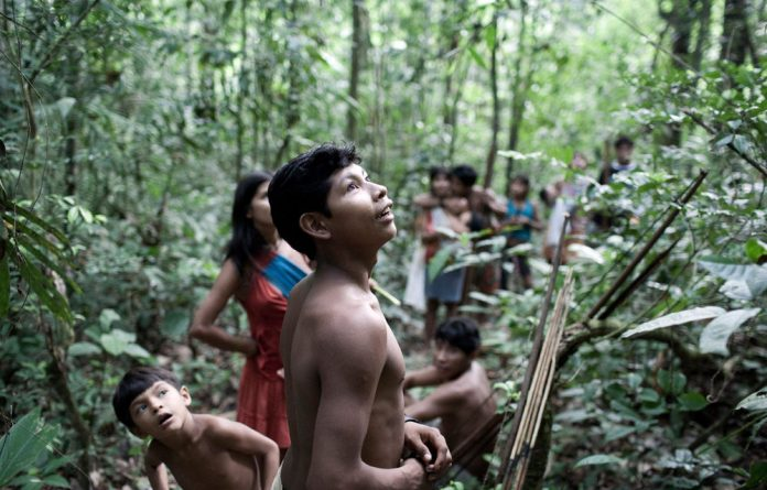 The majority indigenous population of the region appears to be largely united in its opposition to the road through the pristine Amazon rainforest.