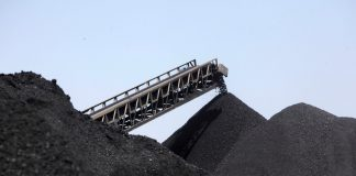 "Radebe: ""It is true that coal jobs are at risk in South Africa"