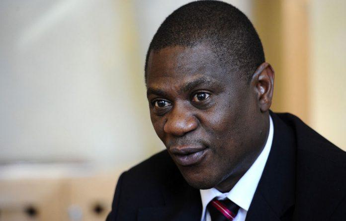Arts and Culture Minister Paul Mashatile.