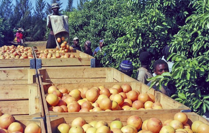 Mokopane is fertile – outside the main town the world's largest citrus farm produces 400-million oranges a year.