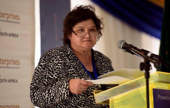 Public Enterprises Minister Lynne Brown.