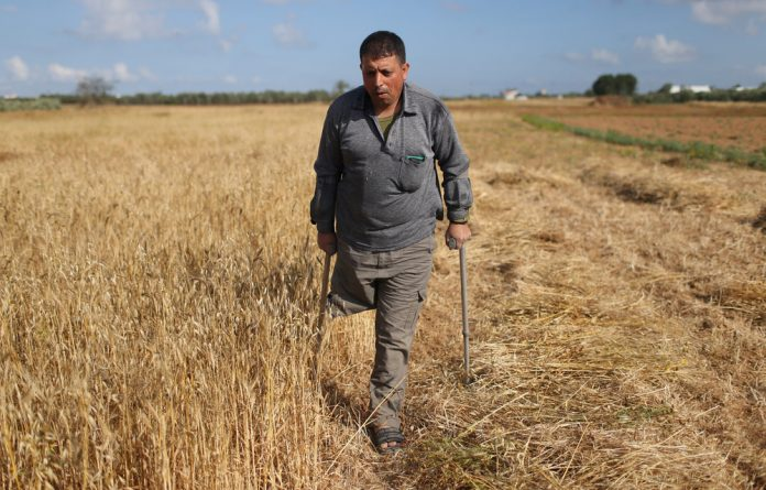 A Palestinian man with an amputated leg uses crutches as he walks on a farm during wheat harvest season in Khan Younis in the southern Gaza Strip April 23 2018.