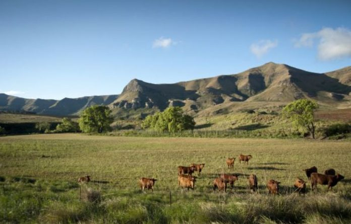 The thousands of existing outstanding land claims can serve as a useful starting point for land expropriation