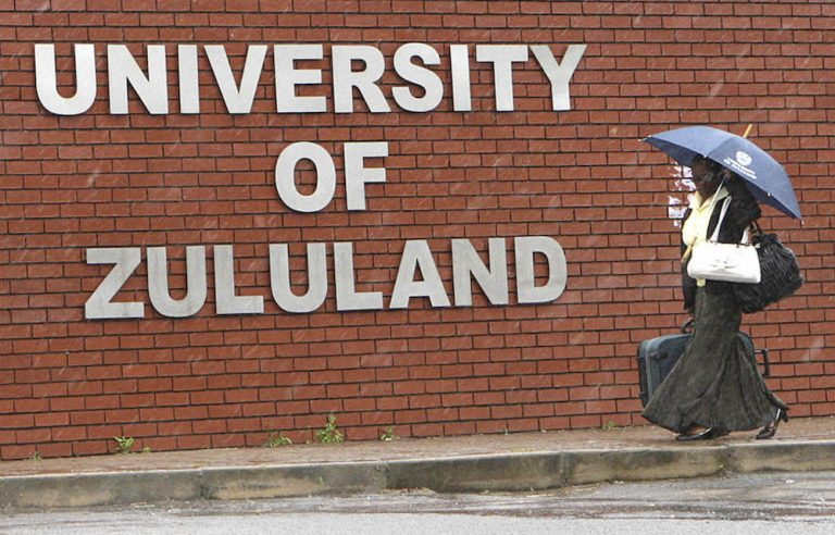 Committee to monitor UniZulu 'until it is fully functional'