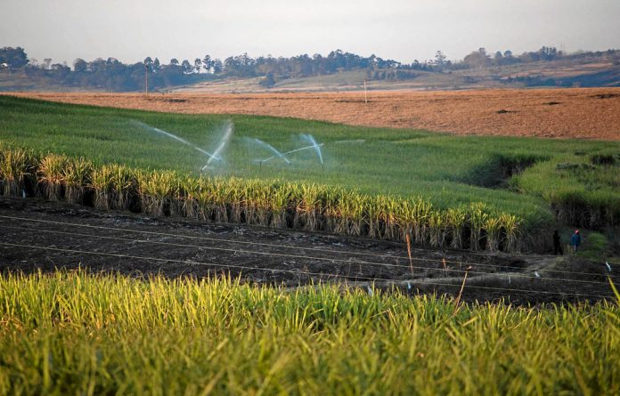 The partnership's Sustainable Sugarcane Farm Management System has been adopted by the South African Sugar Association.