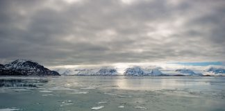A study has found only 30% of radical loss of the Arctic's ice is due to natural variability in the Atlantic