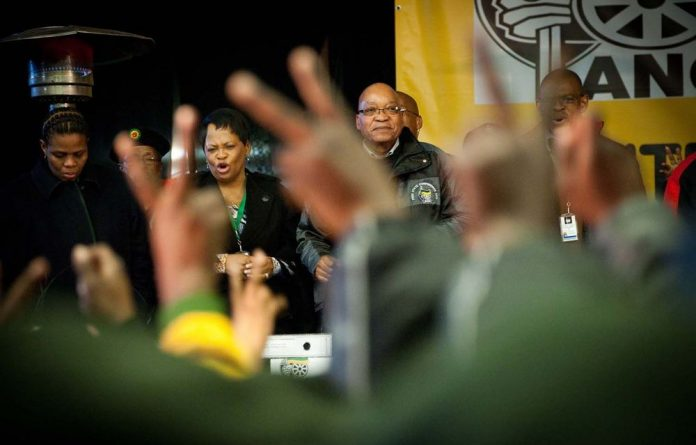 ANC members show their support for a second term for party president Jacob Zuma at the provincial election in Parys.