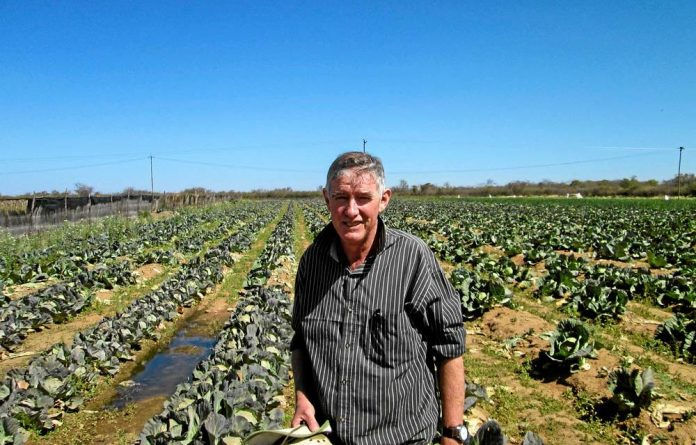 David Conolly's farm is being taken from him by senior civil servant Ray Ndhlukula.