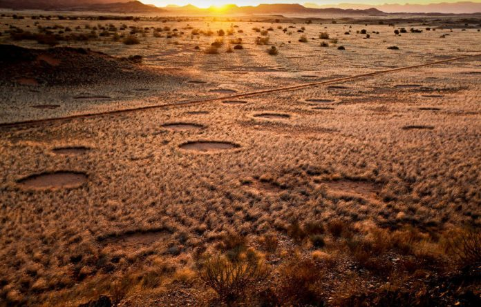 Fairy circles in the Kunene region of Namibia. The round