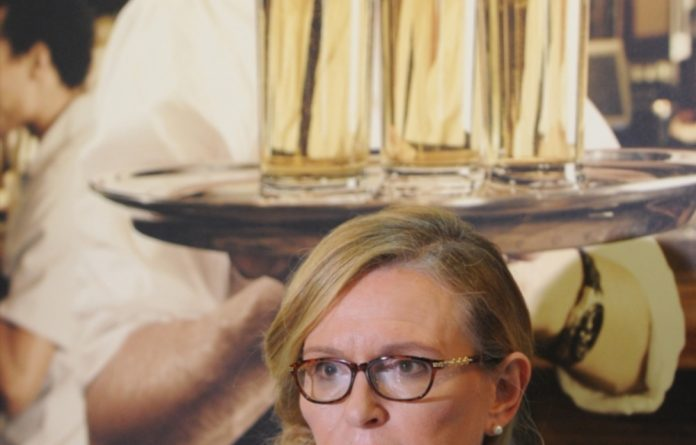 Zille says the province had already conducted a land reform project audit