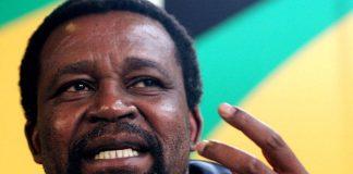 ANC National Executive Committee member Joel Netshitenzhe.