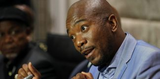 Maimane: Expropriating land without compensation will damage the economy and will lead to many more joining the ranks of the unemployed.