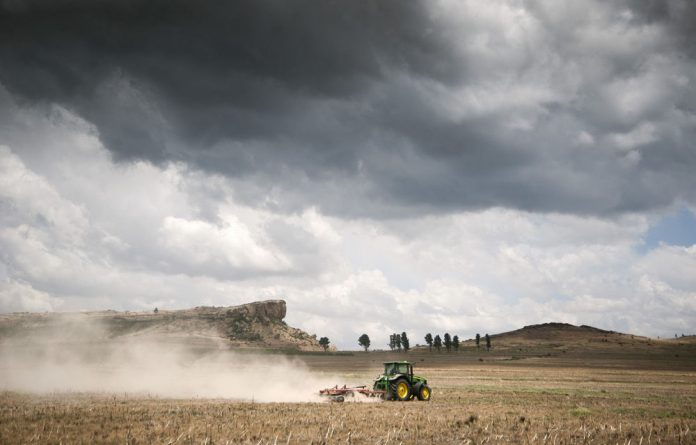 SA maize and citrus farmers are setting their sights on Asia as they grapple with increasing competition in Africa and falling demand in Europe.