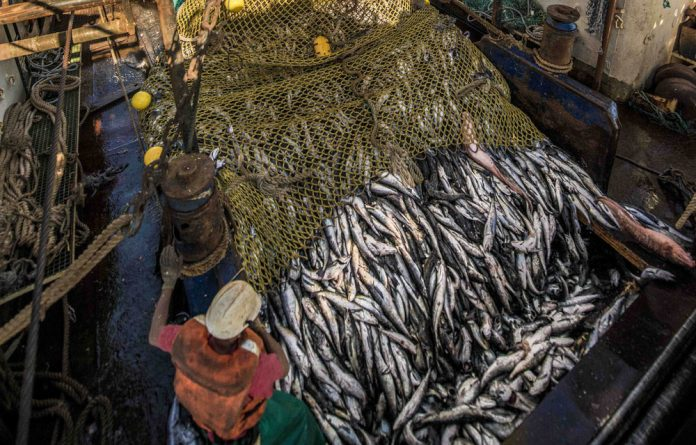 Annual sales from the South African fishing industry exceed R5.4-billion