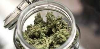 Uruguay was the first country to legalise the sale of recreational cannabis in 2013.