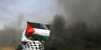 Palestinians are refusing to submit on their knees and are insisting on fighting on their feet — just as people did in Nazi Germany.