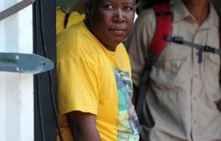 Malema elected to ANC Limpopo committee