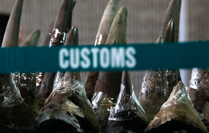 Rhino horns seized by police.