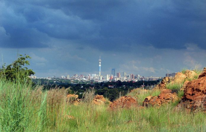 A view of the Johannesburg skyline from the Melville koppies.