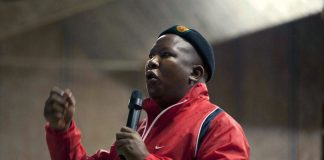 Former ANC Youth League leader Julius Malema.