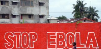 Results from safety trials for two prototype Ebola vaccines should be known in November.