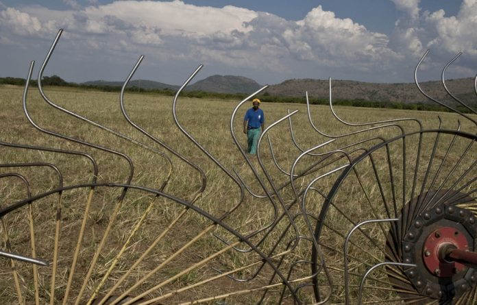 Analysts were unanimous about land reform having limited impact on any decision S&P would make.