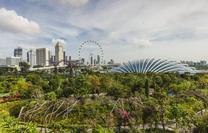 Cool solution: Singapore's green canopy has reduced temperatures by 5˚C