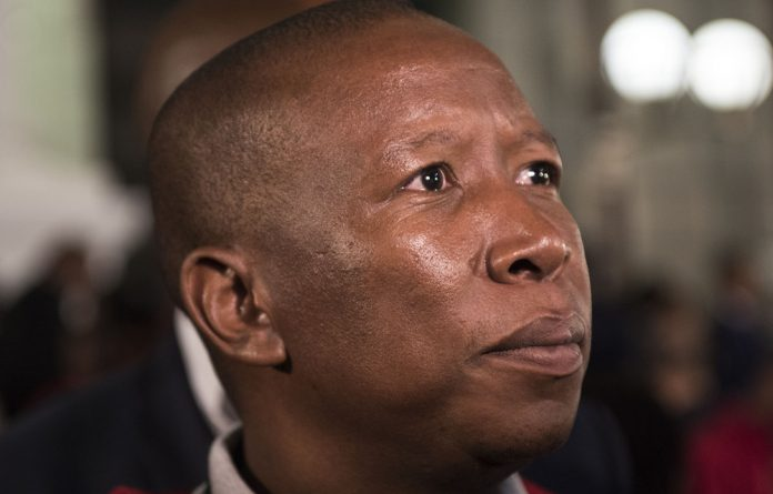 Mapi Mhlangu has said Malema's characterisation of eNCA is not supported by factual record