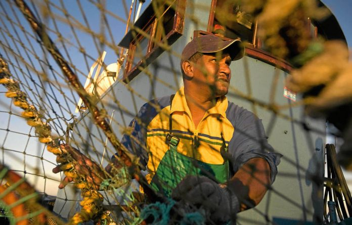 Lobster fishing in Cape Town is under threat from dwindling numbers of West Coast rock lobsters.